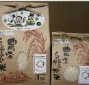 杜のつぶやき米